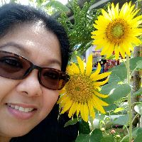 I like sun flower.  - Thai Romances นัดเจอ