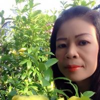 Foto 80593 per Paww - Thai Romances Online Dating in Thailand