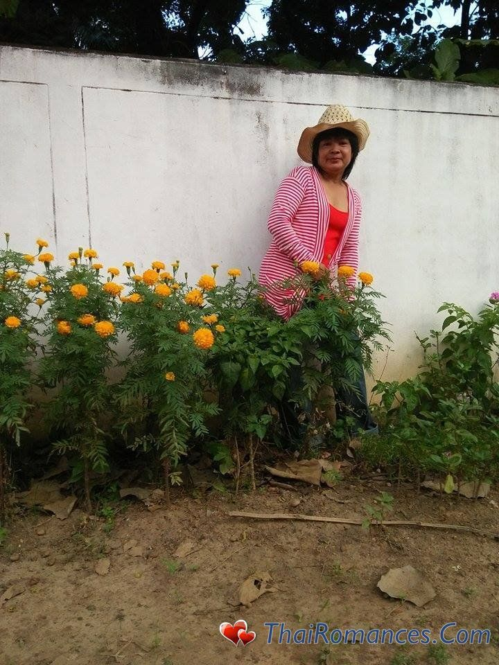 udon thani buddhist personals Thai singles - hallo, i am pp76 from udorn,  udon thani city udorn physical features ethnicity thai  buddhist, christian desirable height 171.
